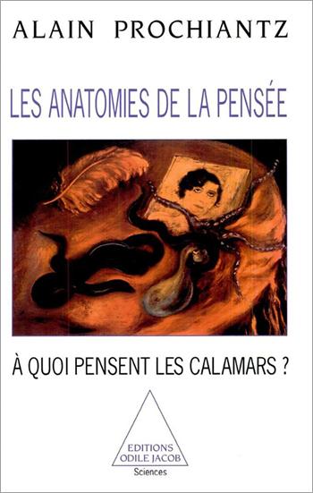 Anatomies de la pensée (Les) - À quoi pensent les calamars ?